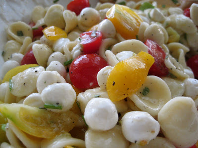 Orecchiette with Fresh Mozzarella, Pear Tomatoes and Garlic Chives