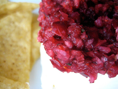 Sweet Fresh Cranberry Salsa
