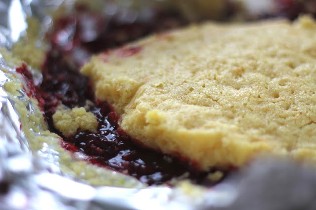 Kash's Red Raspberry Dutch Oven Cobbler