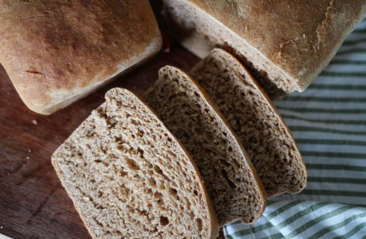 Great Harvest Honey Whole Wheat Bread (copycat)