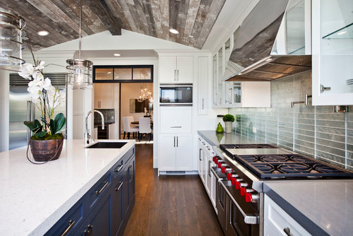 Houzz Blue and White Kitchen