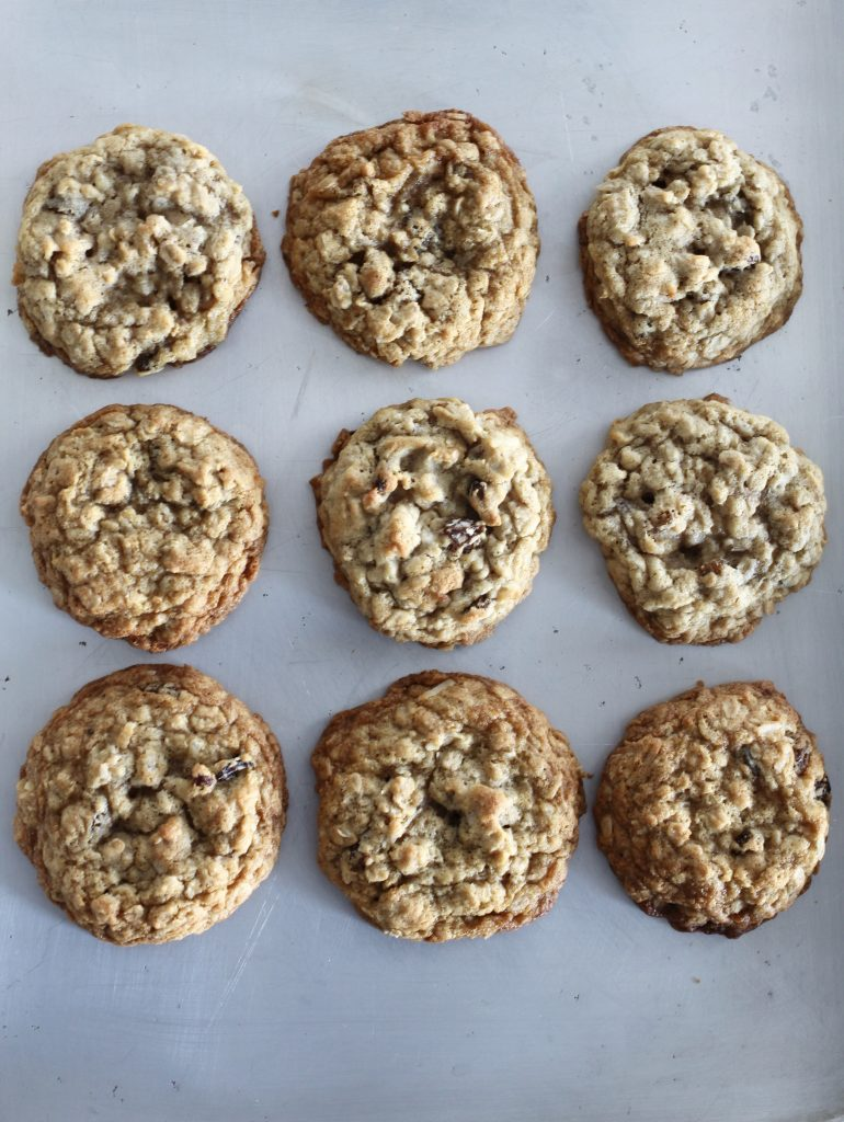 Coconut Raisin Oatmeal Chewies