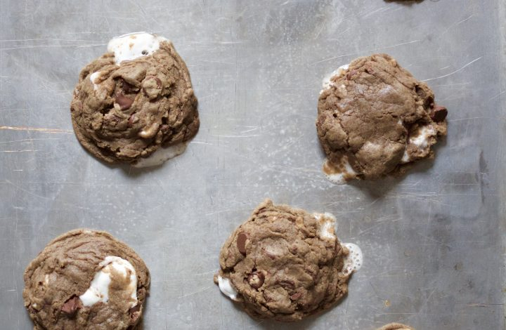 Double Chocolate Chewy Marshmallow Cookies