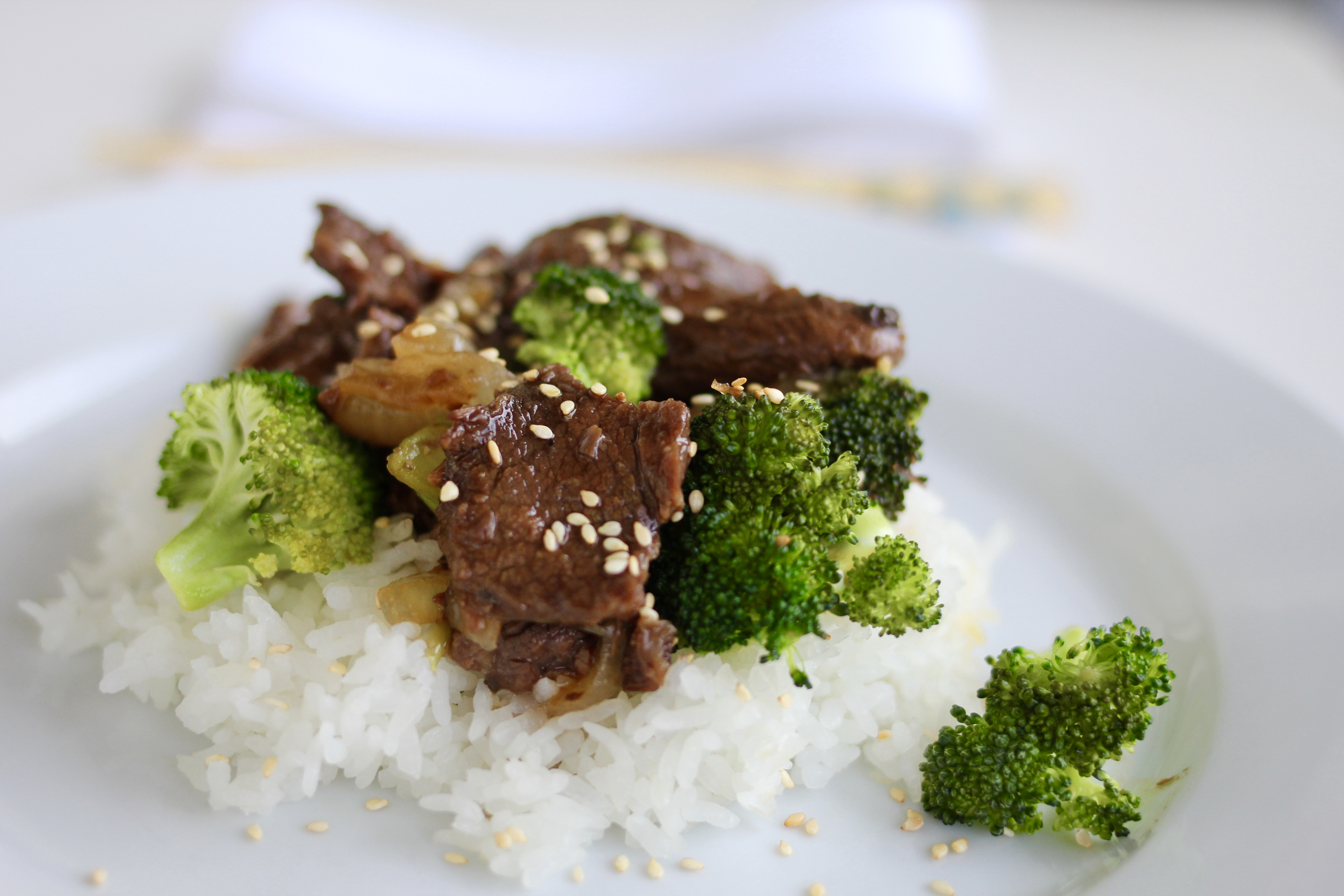 Slow Cooker Beef and Broccoli with Rice | A Bountiful Kitchen