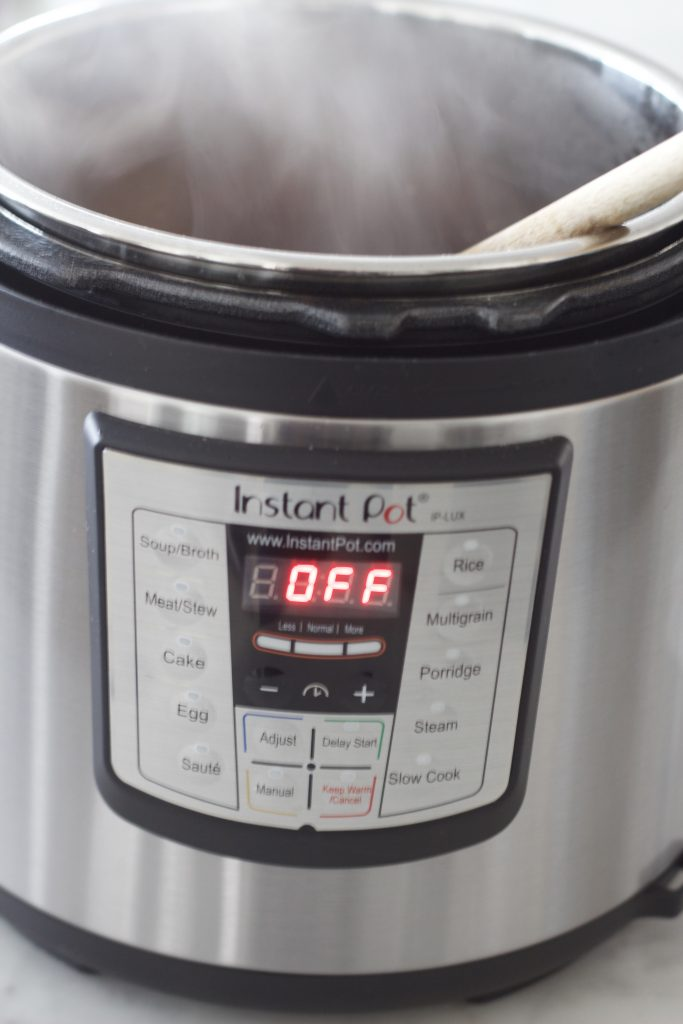 How to Use the Instant Pot or Instant Pot, Now What?