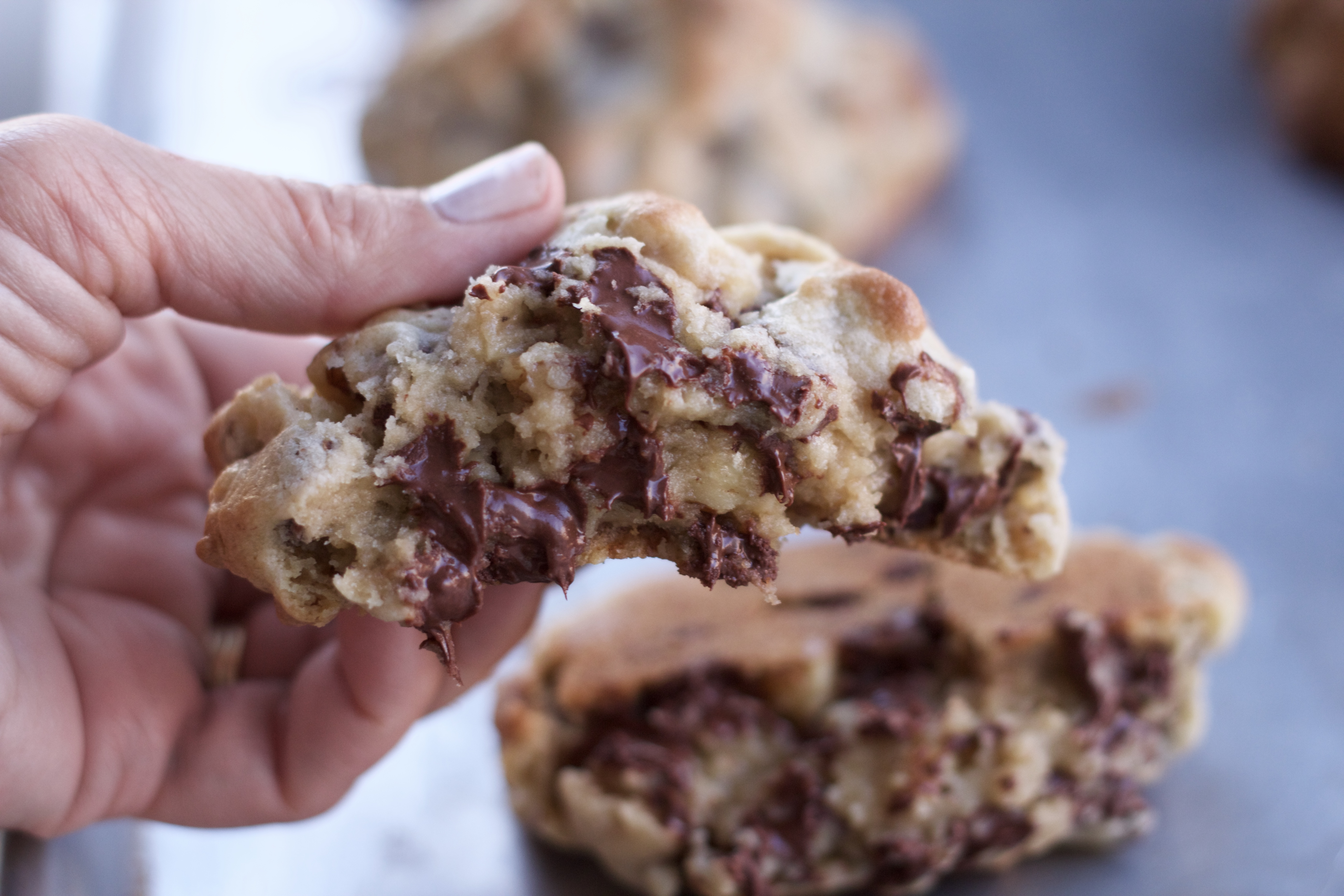 Levain Bakery Dark Chocolate Peanut Butter Chip Cookies