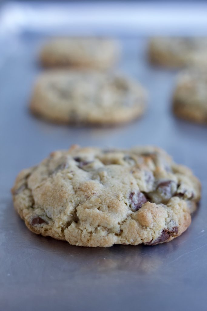 The Best Chocolate Chip Oatmeal Cookie
