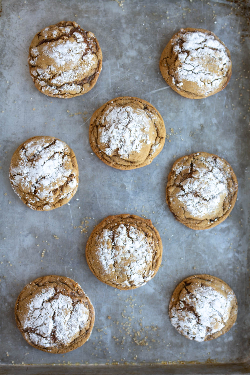 Soft gingersnap cookies with powdered sugar on cookie sheet