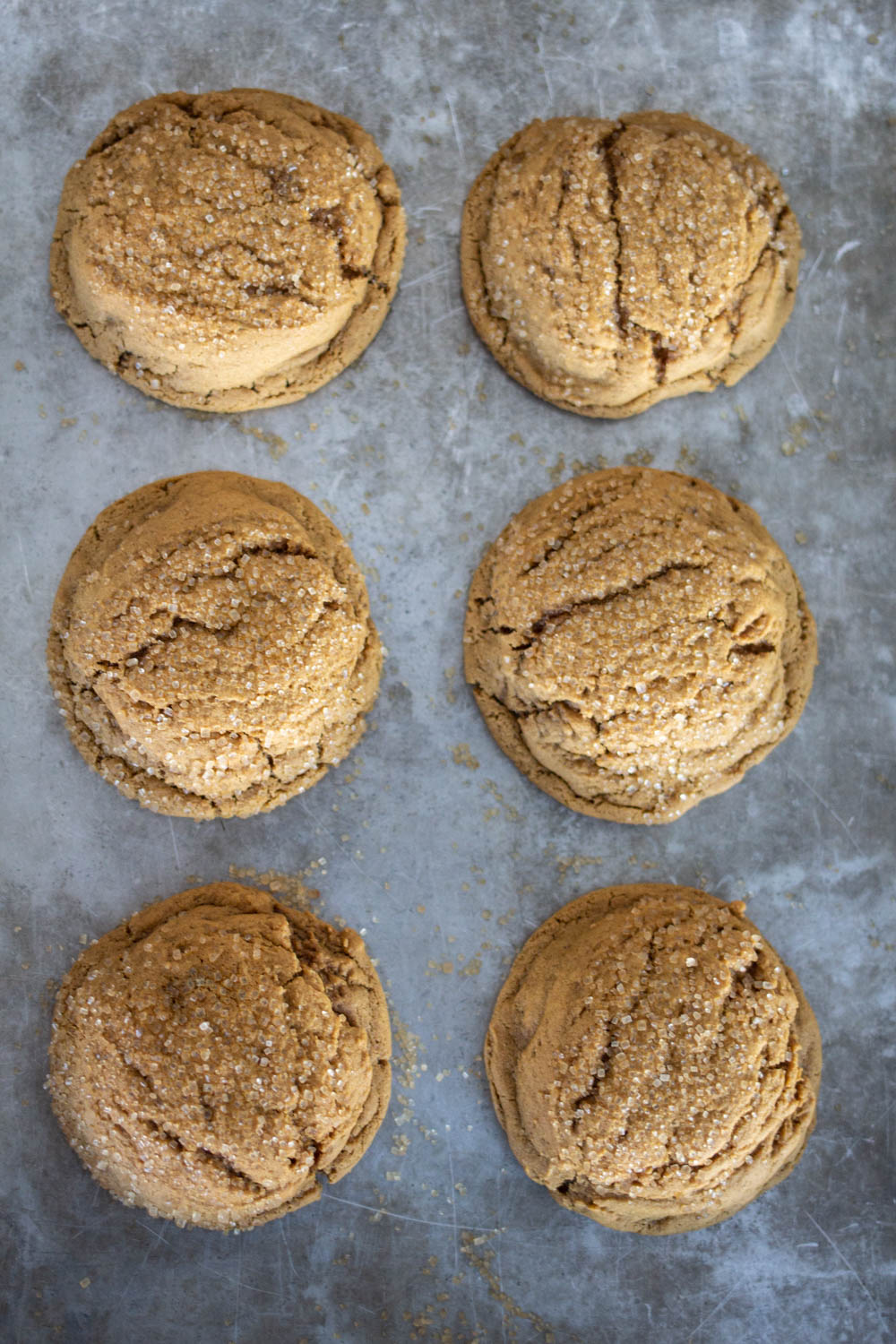 six soft gingersnap cookies on cookie sheet