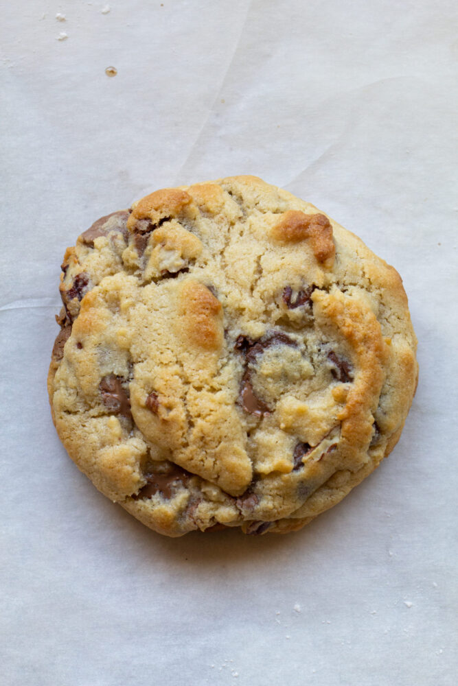 Chocolate Chip Pretzel Cookie